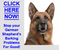 Stop German Shepherd Barking