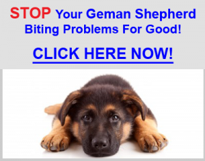 Stop German Shepherd Biting